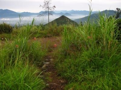 Widok z drogi do Gunung Telagabodas