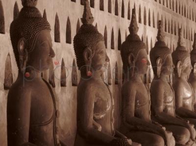 Buddowie z Buddami w tle