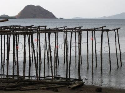 Drewniana konstrukcja nad brzegiem morza w wiosce Komodo na wyspie Komodo