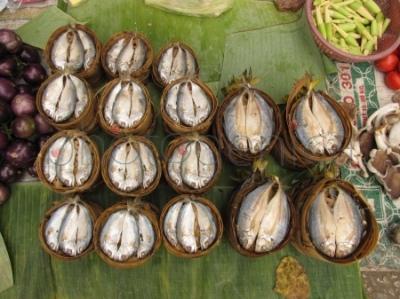 Ryby na targu w Luang Prabang
