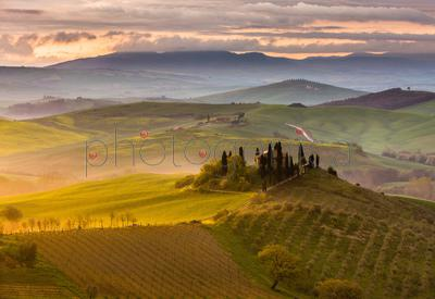 Elevated view of scenic landscape, Val d'Orcia, Tuscany, Italy