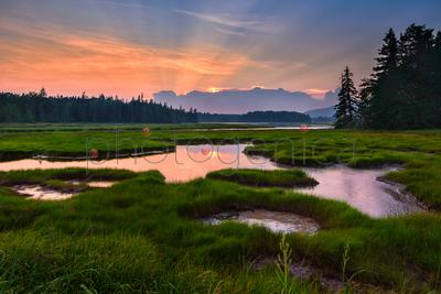 Wetlands at sunset