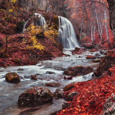Silver Stream Waterfall in autumn forest covered with red leaves