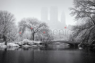 Footbridge in Central Park in winter